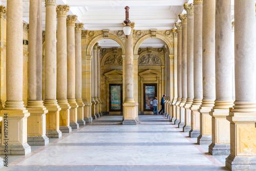 Fotografie, Obraz  Mill Colonnade - Karlovy Vary, Czech Republic