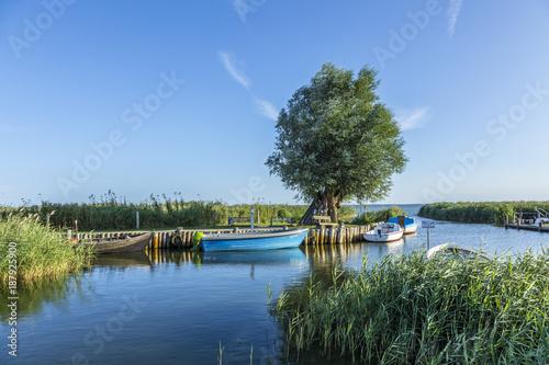 Obraz harbor at backwater in Zempin at the island of Usedom - fototapety do salonu