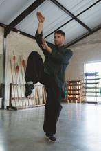 Kung Fu Fighter Training Marti...