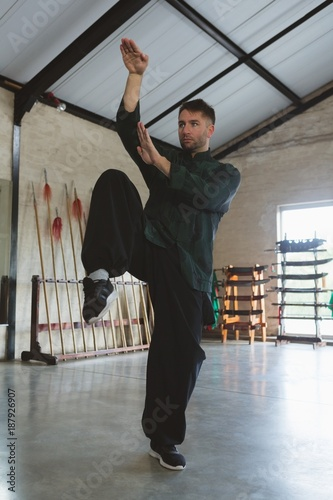 Kung fu fighter training martial arts