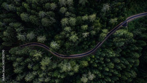Ingelijste posters Luchtfoto Woodland and street from above