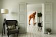 canvas print picture - Giraffenwohnung mit mehreren Zimmern