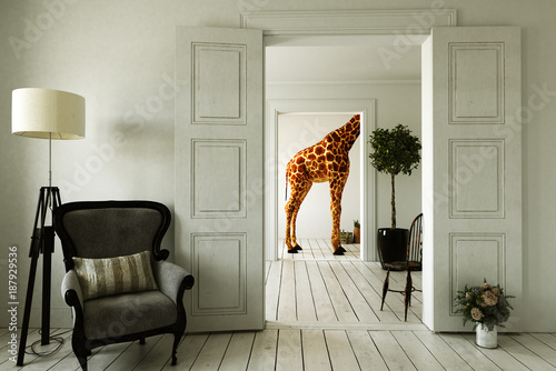 Giraffenwohnung mit mehreren Zimmern Canvas Print