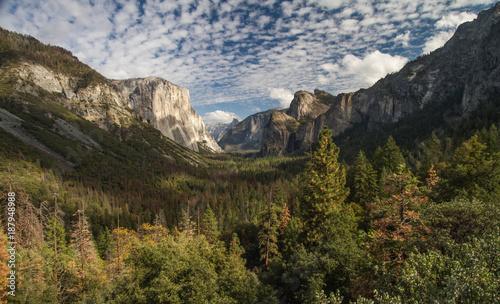 Fotobehang Natuur Park Yosemite