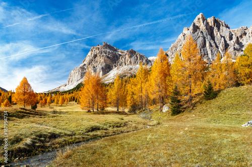 Obraz na plátně jesienne, kolorowe drzewa i strumyk na łące pod  Monte Lagazuoi i Tofana do Roze