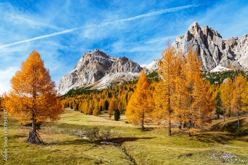 Fotografie, Obraz  jesienne, kolorowe drzewa i strumyk na łące pod  Monte Lagazuoi i Tofana do Roze