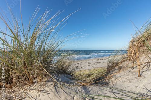 Spoed Foto op Canvas Noordzee dünenund meer