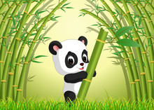 Two Cute Panda In A Bamboo For...