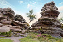 Rock Formations At Brimham Rocks