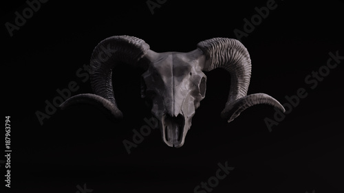 Grey Sculpted Ram Skull Wallpaper Mural