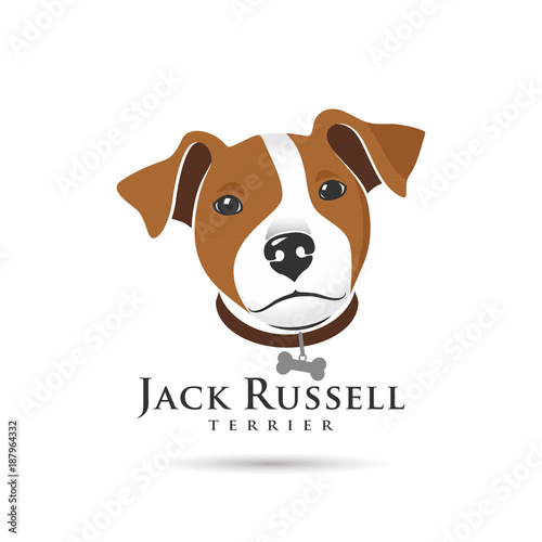 Obraz Jack Russell Terrier Head - fototapety do salonu