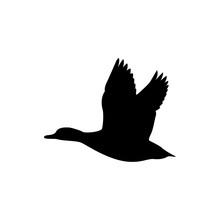 Flying Duck Vector Silhouette