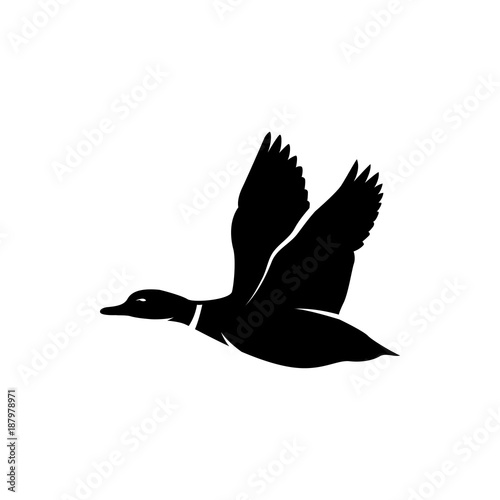 flying duck vector silhouette