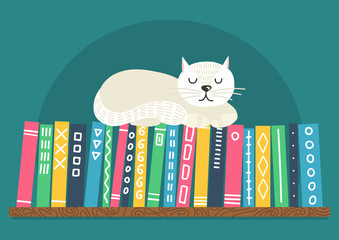 Books on shelf with white cat. Difrent color books with ornament on shelf on ...