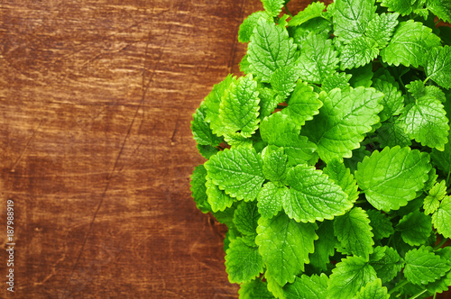 Tuinposter Kruiderij Mint leaves on a wooden background. Melissa
