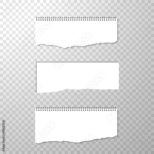 Horizontal Torned Off Piece Of Paper With Spiral Bound Empty Isolated Edge On Transparent