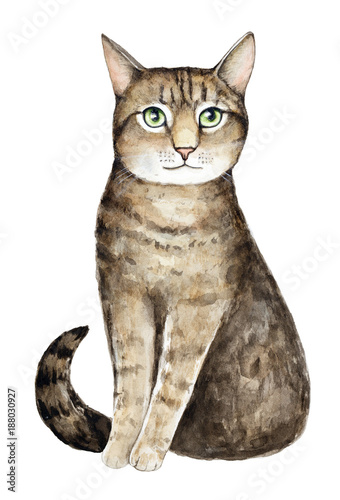 Photo Watercolor cat portrait