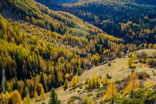 Papiers peints Miel Paysage Alpin en automne, les montagnes, la rivière et la forêt.
