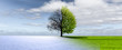 Leinwanddruck Bild - Winter-Frühling