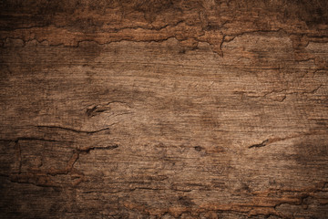 Fototapeta Do pizzerii Wood decay with wood termites , Old grunge dark textured wooden background , The surface of the old brown wood texture