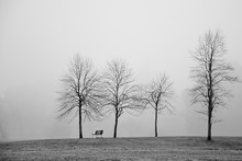 Lonely Park Bench In The Fog