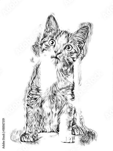 Szkic kota sztuki ilustracji