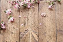 Pink Spring Flowers On Old Woo...