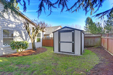Backyard View With A Shed On A...