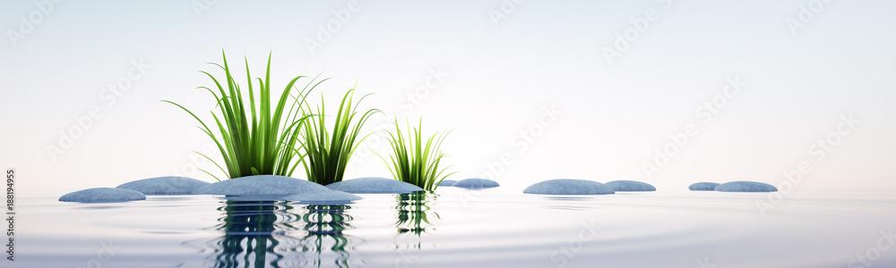 Fototapeta Steine und Gras im See Querformat