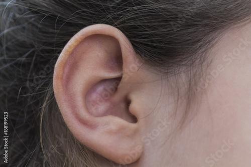 Photo orecchio destro