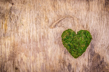 Heart Of Moss. Green Heart On ...