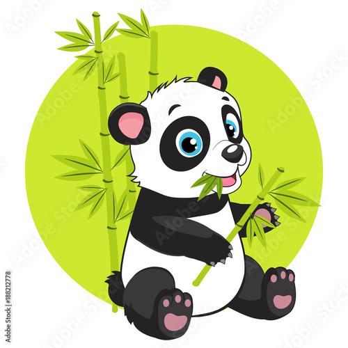 cute-baby-panda-bear-w-bambusowym-lesie-obrazu
