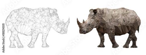 Fotografija  Rhino triangulation vector