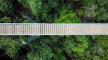 Suspension Bridge Surrounded B...