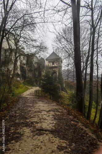 Foto op Aluminium Rudnes zamek ruiny