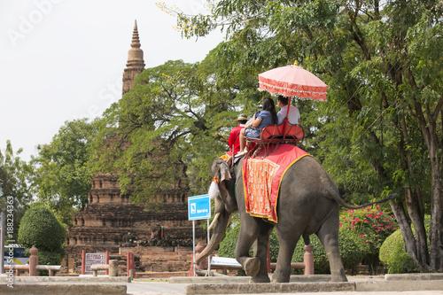 traveller sitting on elephant watching pagoda of ayutthaya on holiday Canvas Print