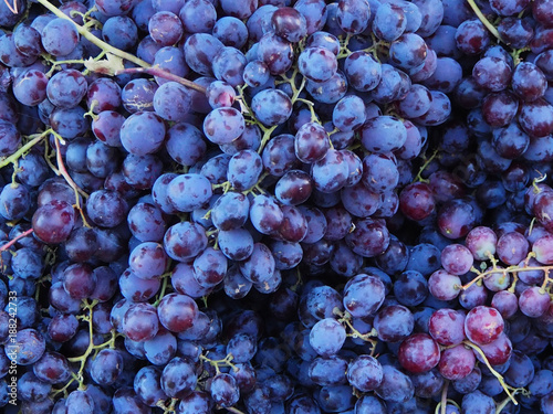 Fresh blue and purple grapes in the market