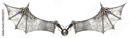 Photo  Steampunk wings bat isolated