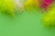 Colored feathers on a green background. Poster for carnival and holidays.