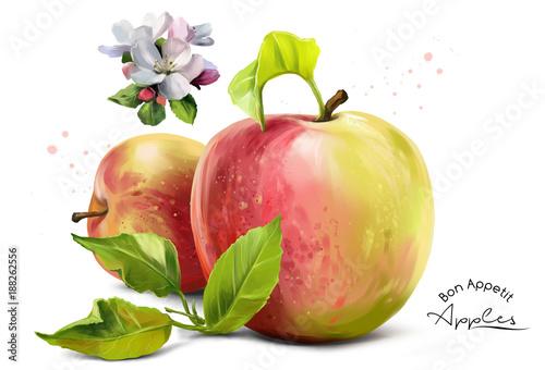 Fototapeta Apples, flowers and splashes of watercolor painting obraz