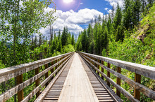 Lonely Hiker At The End Of A Wooden Bridge On A Sunny Spring Day. Concept Of Loneliness.