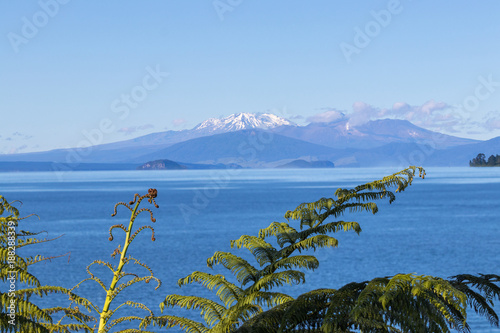 Foto auf AluDibond Neuseeland Lake Taupo view, New Zealand