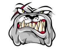 Illustration Of Angry Bulldog ...