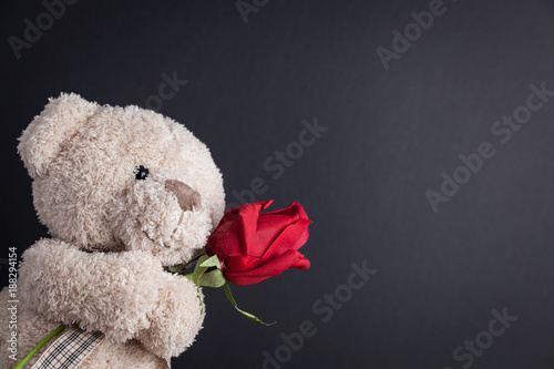 Fotografie, Obraz  Teddy Bear holding a red rose in front of a blackboard