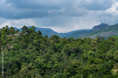 Poster Watervallen Scenic view of Srilankan mountain forest