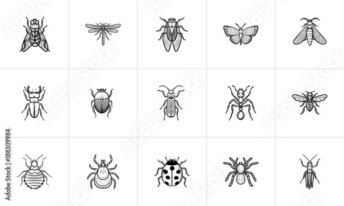 Photographie Insects sketch icon set for web, mobile and infographics