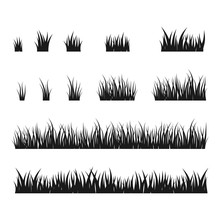 Silhouettes Of Black Grass, Ve...