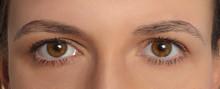 Symmetrical Women's Eyes . Symmetric Macro Mirrored Two Deep Human Eyes. Close-up Brown Eyes Of European Person.