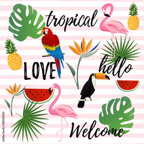 tropikalny-bezszwowy-deseniowy-tlo-tropikalny-projekt-plakatu-tlo-wakacje-i
