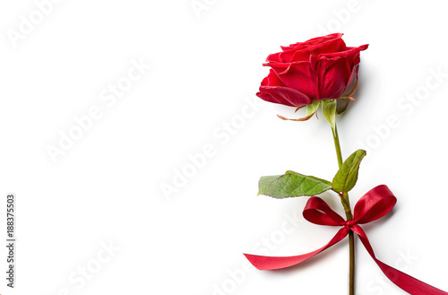 Foto op Aluminium Roses Red rose with ribbon isolated on white background